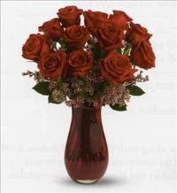 Red Rose Passion Bouquet- One Dozen Red by McAdams Floral, your Victoria, Texas (TX) Florist
