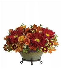Tuscan Autumn Bowl Centerpiece by McAdams Floral, your Victoria, Texas (TX) Florist