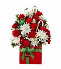 The FTD Holiday Cheer Bouquet 2015 Standard by McAdams Floral, your Victoria, Texas (TX) Florist