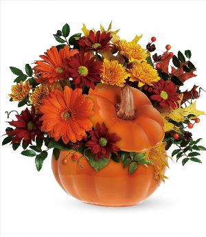 Country Pumpkin by McAdams Floral, your Victoria, Texas (TX) Florist