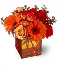 Sunrise Sunset by McAdams Floral, your Victoria, Texas (TX) Florist