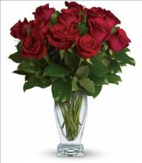 Rose Classique by McAdams Floral, your Victoria, Texas (TX) Florist
