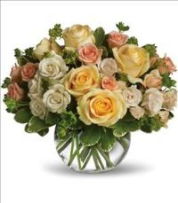 This Magic Moment by McAdams Floral, your Victoria, Texas (TX) Florist