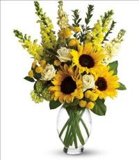 Here Comes The Sun by Teleflora by McAdams Floral, your Victoria, Texas (TX) Florist