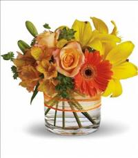 Sunny Siesta by McAdams Floral, your Victoria, Texas (TX) Florist