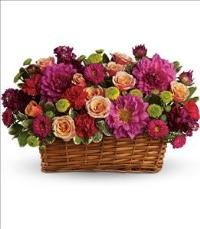 Burst of Beauty Basket by McAdams Floral, your Victoria, Texas (TX) Florist