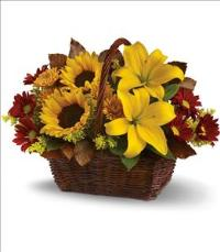 Golden Days Basket by McAdams Floral, your Victoria, Texas (TX) Florist