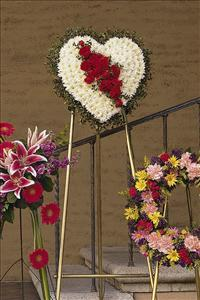 White Heart with Red Carnations by McAdams Floral, your Victoria, Texas (TX) Florist