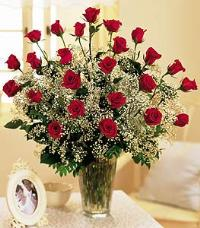 Field Of Roses by McAdams Floral, your Victoria, Texas (TX) Florist
