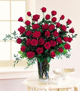 Three Dozen Red Roses by McAdams Floral, your Victoria, Texas (TX) Florist