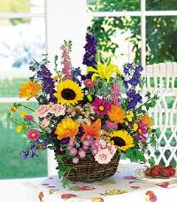 Summer Flower Basket by McAdams Floral, your Victoria, Texas (TX) Florist