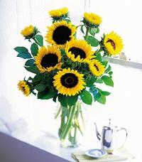 Sunflowers in a Vase by McAdams Floral, your Victoria, Texas (TX) Florist