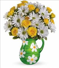 Happy Daisies Bouquet by McAdams Floral, your Victoria, Texas (TX) Florist