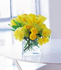 Cube with Yellow Blooms by McAdams Floral, your Victoria, Texas (TX) Florist