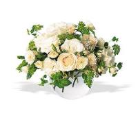 White Roses & Carnations by McAdams Floral, your Victoria, Texas (TX) Florist