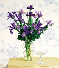 Iris Bouquet in a Vase by McAdams Floral, your Victoria, Texas (TX) Florist