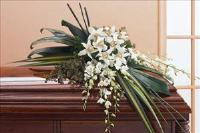 Half-Couch Orchid Spray by McAdams Floral, your Victoria, Texas (TX) Florist