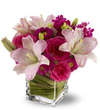 Posh Pinks by McAdams Floral, your Victoria, Texas (TX) Florist