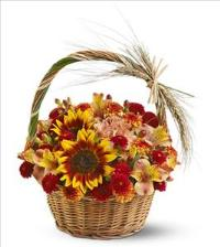 Harvest Basket by McAdams Floral, your Victoria, Texas (TX) Florist