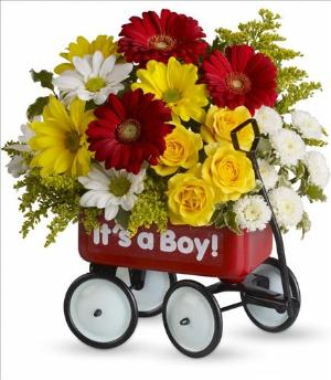 Baby's Wow Wagon by McAdams Floral, your Victoria, Texas (TX) Florist