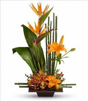 Exotic Grace by McAdams Floral, your Victoria, Texas (TX) Florist