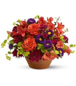 Autumn Celebration by McAdams Floral, your Victoria, Texas (TX) Florist