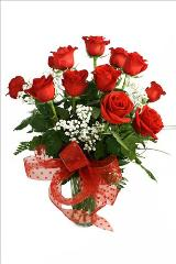 McAdams SIGNATURE 12 Long Stem Roses by McAdams Floral, your Victoria, Texas (TX) Florist