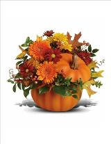 Something Pumpkin Bouquet by McAdams Floral, your Victoria, Texas (TX) Florist