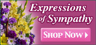 Sympathy Flowers - Shop Now