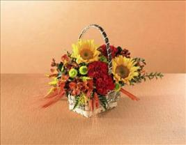 Autumn Harvest™ Basket by McAdams Floral, your Victoria, Texas (TX) Florist
