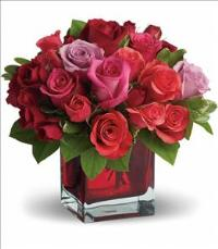 Madly in Love by Teleflora by McAdams Floral, your Victoria, Texas (TX) Florist