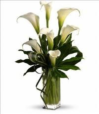 My Fair Lady by Teleflora by McAdams Floral, your Victoria, Texas (TX) Florist
