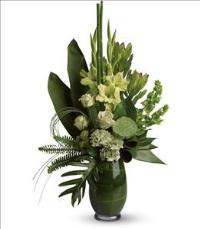 Limelight Bouquet by McAdams Floral, your Victoria, Texas (TX) Florist