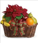 Fruit and Poinsettia Basket by McAdams Floral, your Victoria, Texas (TX) Florist