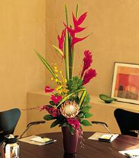 Mixed Tropical Vase by McAdams Floral, your Victoria, Texas (TX) Florist