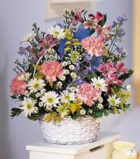 Baby Pastels in White Basket by McAdams Floral, your Victoria, Texas (TX) Florist