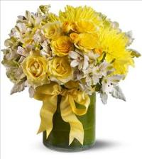 Lemon Aid by McAdams Floral, your Victoria, Texas (TX) Florist